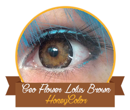 review_honeycolor_geoflowerlotusbrown