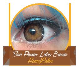 review_honeycolor_geoflowerlotusbrown